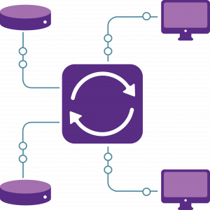 WP Data Sync Basic Plan Graphic